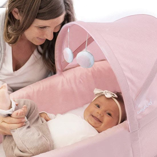 canopy of the Lulyboo Baby To Go baby Bassinet